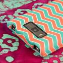 LG Splendor/ Venice - Mint Chevron MPERO SNAPZ - Rubberized Case Cover Angle 6